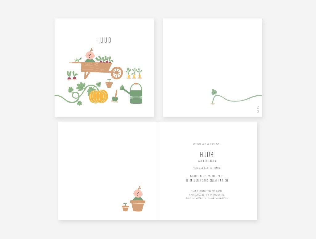 Het geboortekaartje tuintje met bietjes, worteltjes, een pompoen, een gieter, een kruiwagen en een lieve baby