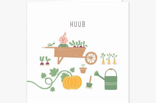 Het geboortekaartje tuintje. Met een lieve baby in een kruiwagen omringt door plantjes en groenten