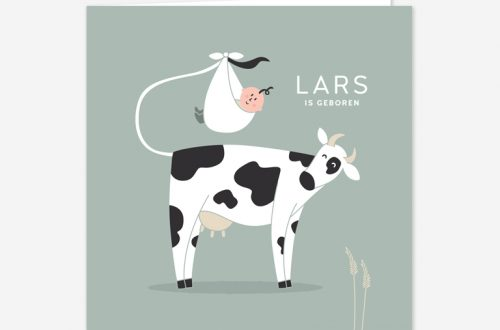 Geboortekaartje koetje. Een vrolijk geboortekaartje met een lieve baby en een Nederlandse koe.